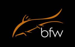 Barbel Fishing World